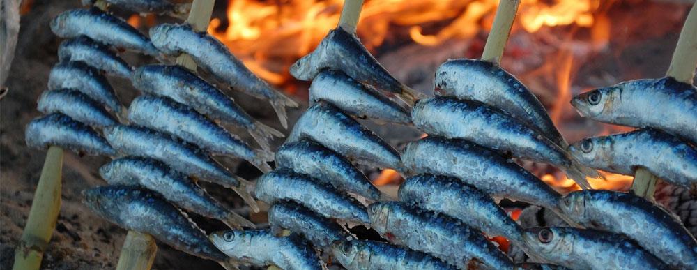 espetos-sardina-malaga