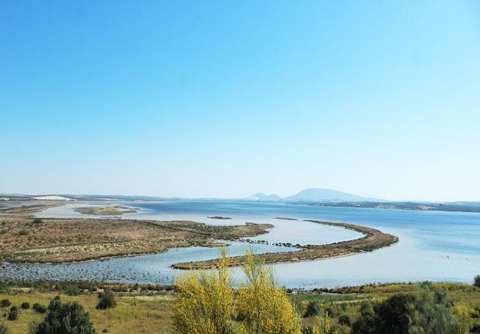 Reserva Natural Laguna Fuente de Piedra