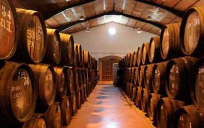 Bodegas de vino en Málaga